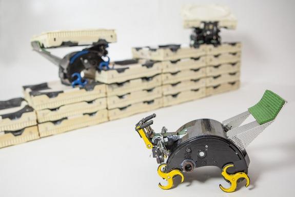 ربات های کارگر ساختمانی در حال جابجایی آجرهای فومی